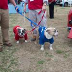 Citadel Bulldogs Mascots